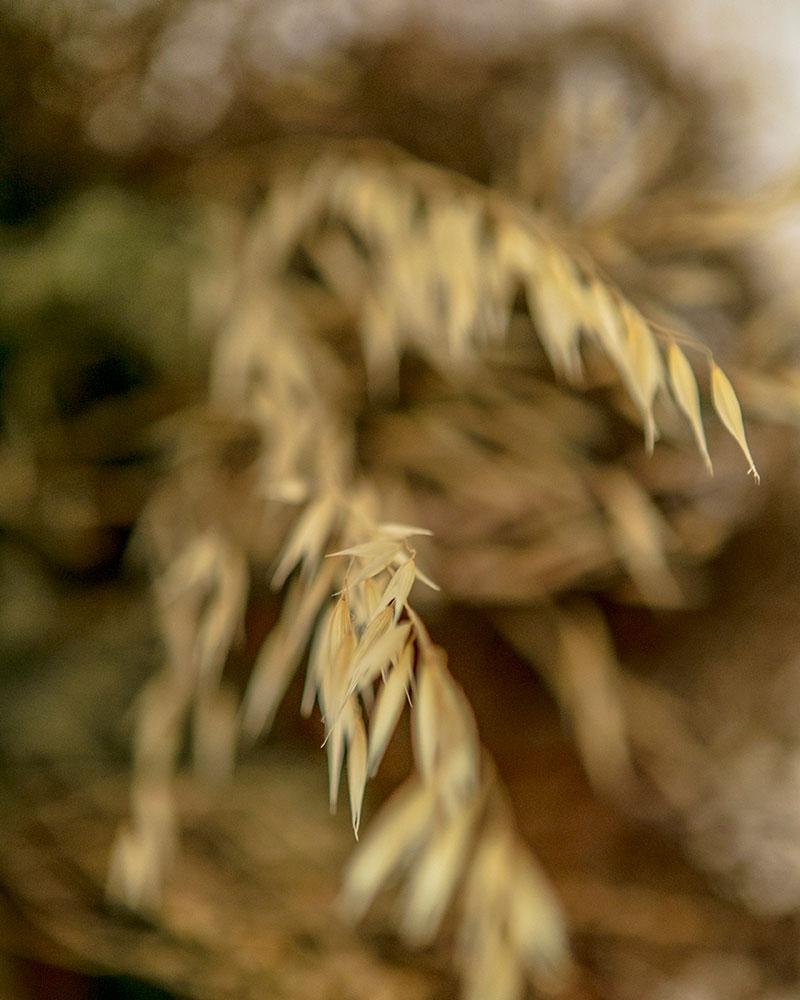 beyong-portrait-close-up